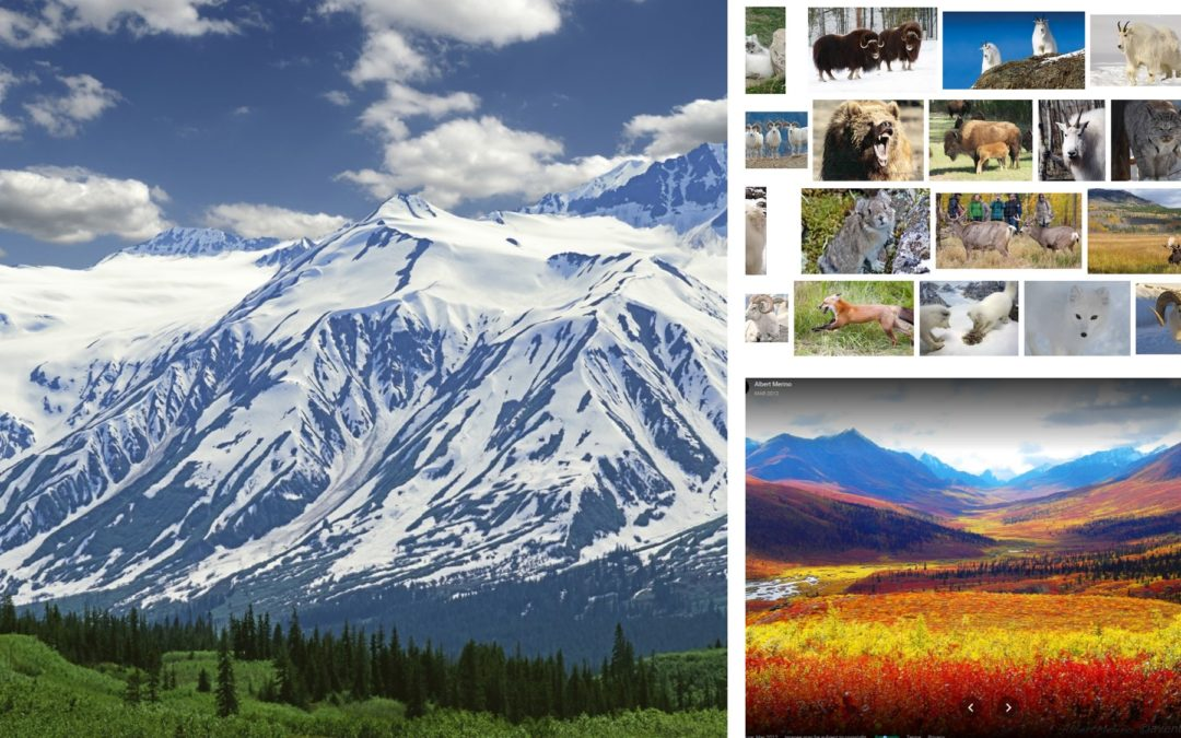 Yukon: One of the last great wildernesses